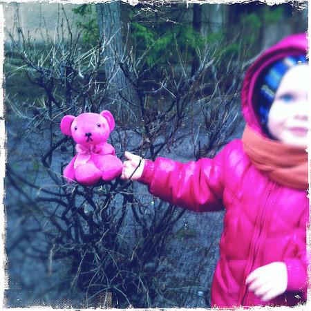 120324 Paula's bear