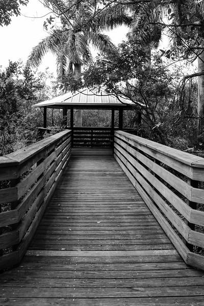 20156-03-24 Green Cay Wetlands |  Delray Beach, Florida