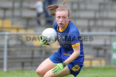 Wicklow Ladies Football 2008-18