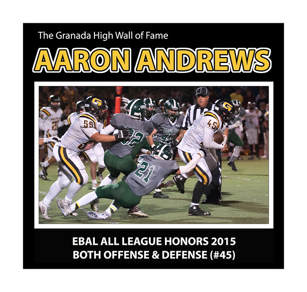 ANDREWS FB-Aaron_Andrews 17 x 17 - Version 02.jpg