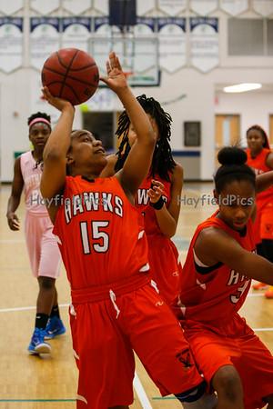 Girls Varsity Basketball v South Lakes 2/6/15