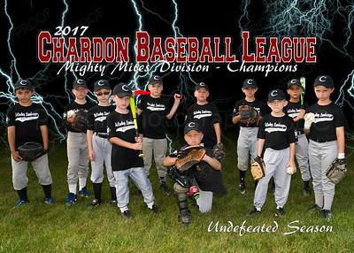 2017 Chardon Baseball League