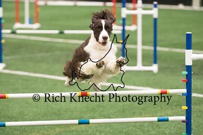 Burligton County Kennel Club AKC Agility Trial April 22-23