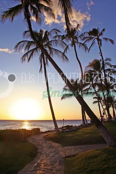 Sunset Path_batch_batch.jpg