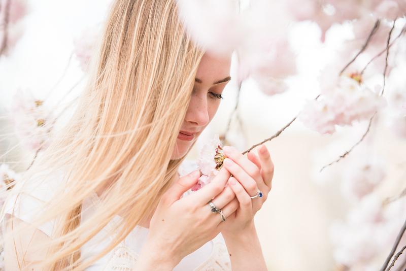 Cherry Blossoms (17 of 182).jpg