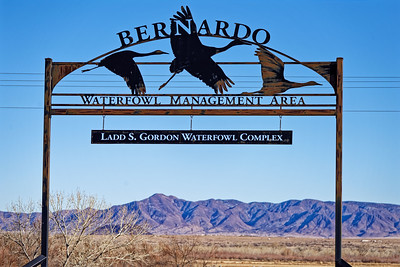 Bernardo Wildlife Area - Jan 19, 2020