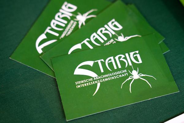 STARIG - Exotica 2020