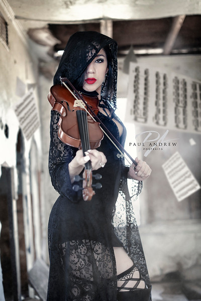 ViolinFlyDL2