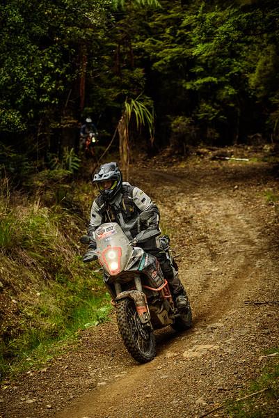2019 KTM New Zealand Adventure Rallye (1312).jpg