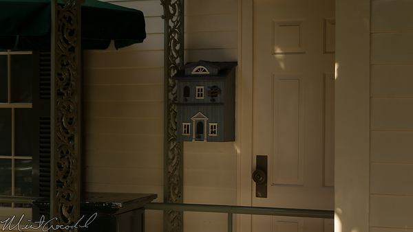 Disneyland Resort, Disneyland, New Orleans Square, Haunted Mansion, Haunted, Mansion, House, Box