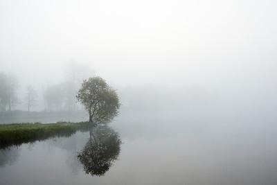 2014-04 't Lisje in the Fog