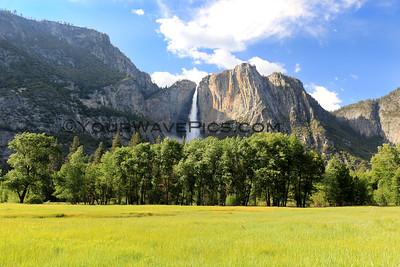 Yosemite/Sacramento/Hwy 1 June 10-23, 2019