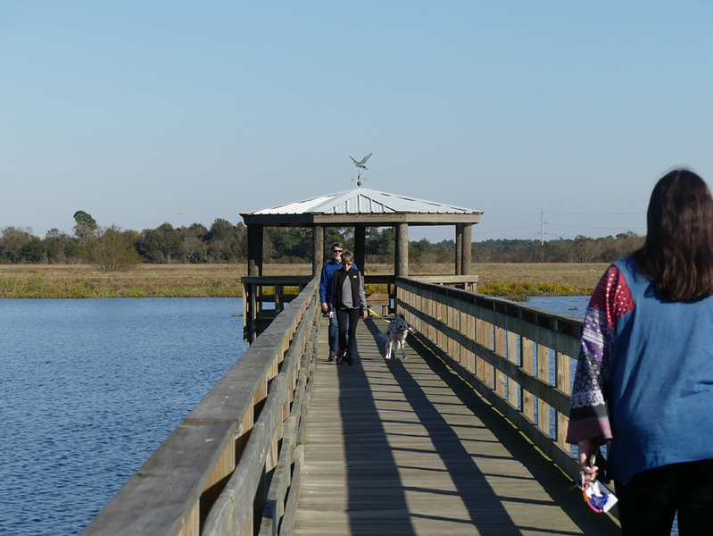 People walking on a wooden boardwalk over Cattail Marsh in Beaumont, Texas.