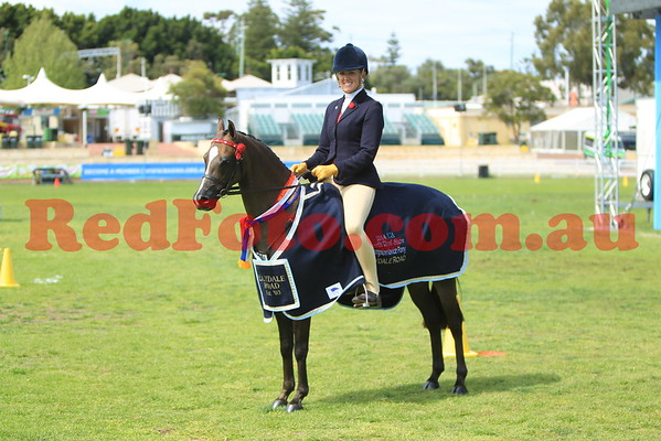2014 09 26 Perth Royal Show Novice Pony Hack