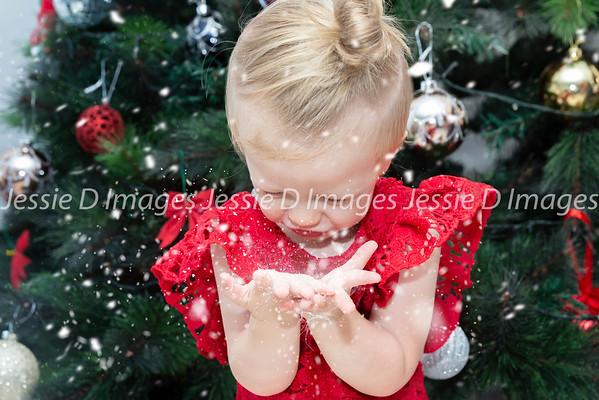 Christmas Mini - Charli