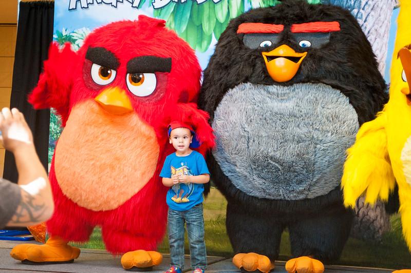 Angry Birds StoneCrest Mall 221.jpg
