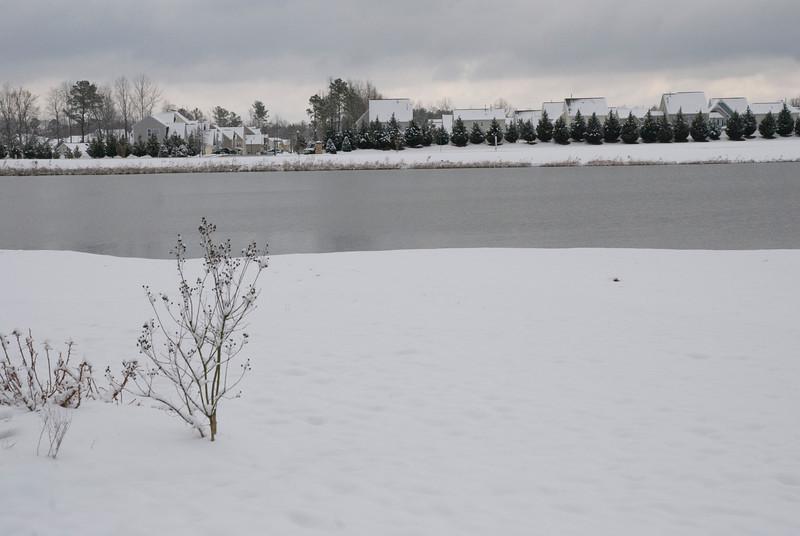 SnowFeb13-17.jpg