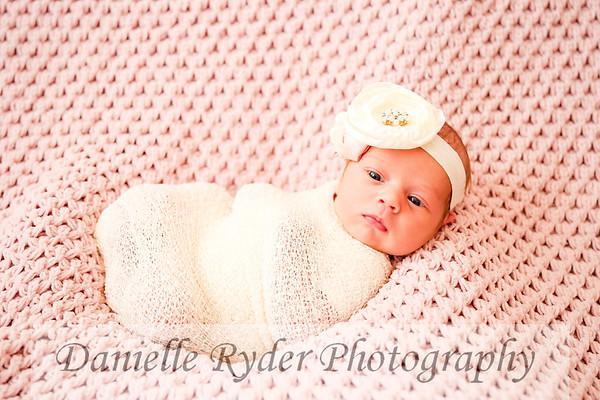 Baby Donahue