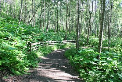7/3/06 - Thunderbird Falls - Anchorage, AK hike