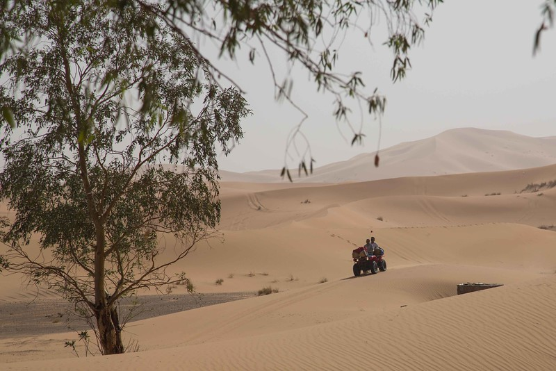 160925-043219-Morocco-0442.jpg