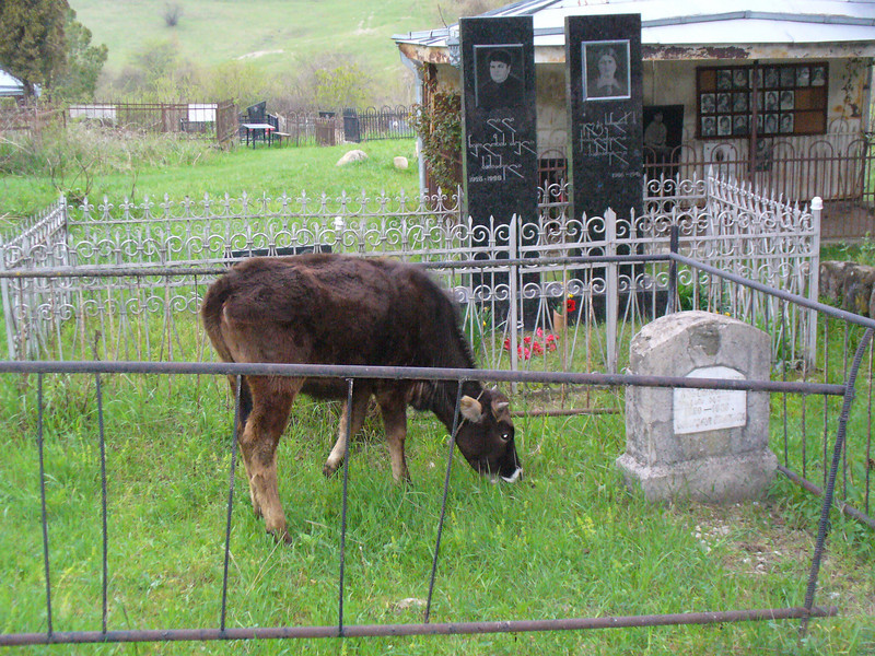 029_Ikalto_Monastery_and_Academy_Cemetery.jpg