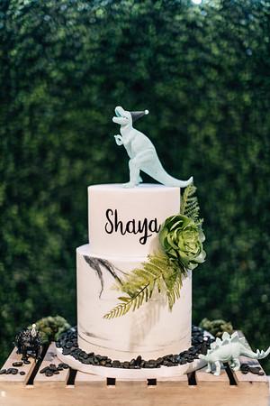 Shaya Bday
