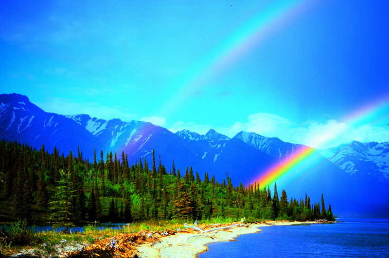Tazimna rainbow.jpg