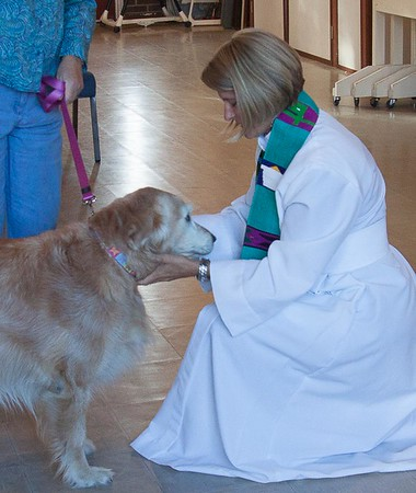 2015-10-18 Blessing of the Animals