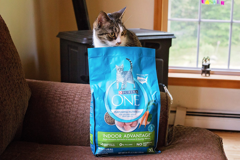 Purina ONE For dogs and cats-7-2.jpg