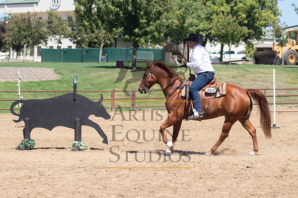 Mother Lode Working Equitation Show