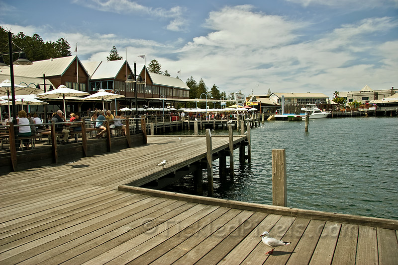 The Wharf at Fishing Boat Harbour