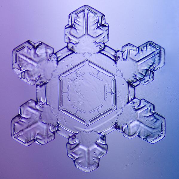 snowflake-5559-Edit-Edit.jpg