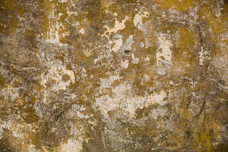 9-Lindsay-Adler-Photography-Firenze-Textures-COLOR.jpg