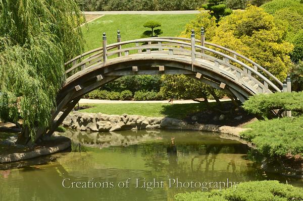 Huntington Botanical Garden