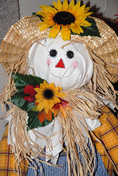 11/20/07 – Lisa likes to decorate for the holidays and that starts with Thanksgiving. This is a scarecrow that stands about 3 feet tall at the front entrance of our home. The home feels very festive this time of the year.