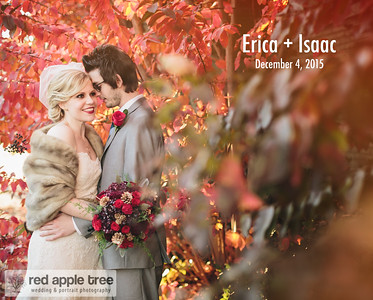 Erica + Isaac Wedding Album