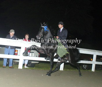 CLASS 32  AMATEUR STAKE - CANTER