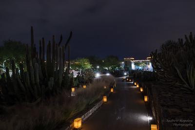 Las Noches De Las Luminarias
