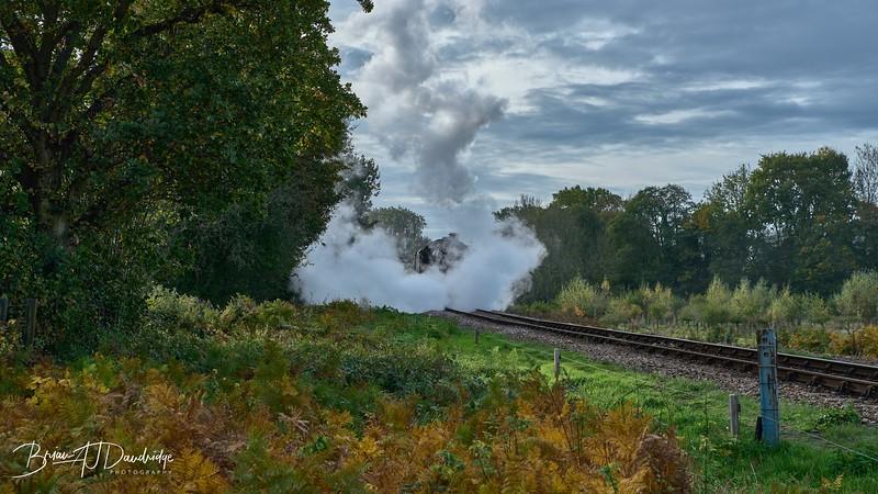 Bluebell Railway - Giants of Steam-87412 - 10-23 am.jpg