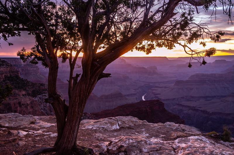 Grand canyon-5165.jpg