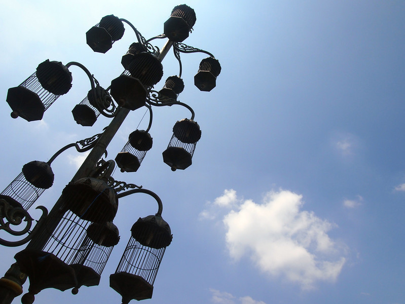 P4146796-bird-cage-street-light.JPG