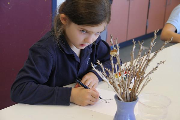 3rd-Graders Study Plants