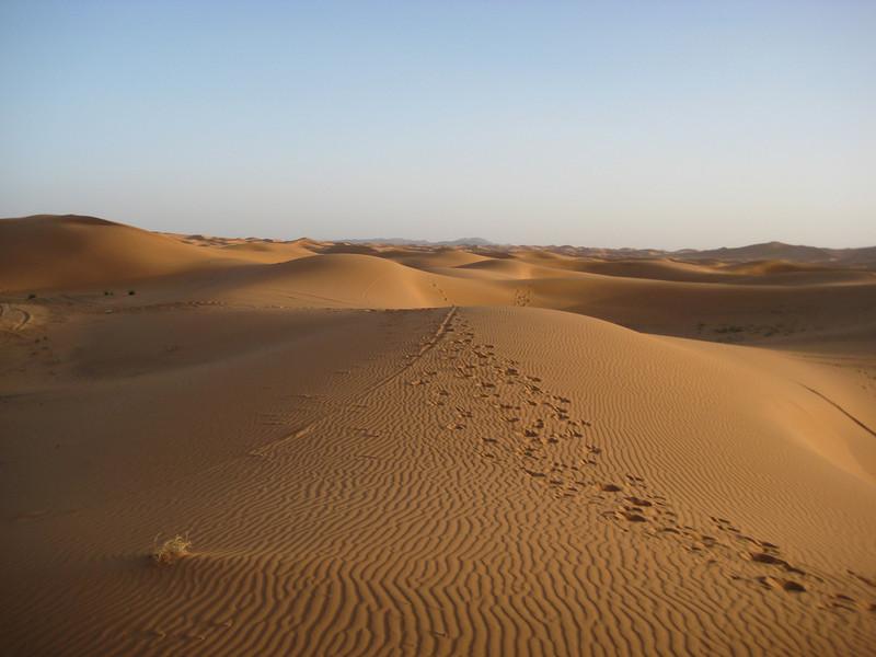 day4-SaharaCamp-29.jpg