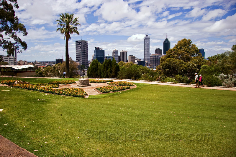 Afternoon in King's Park