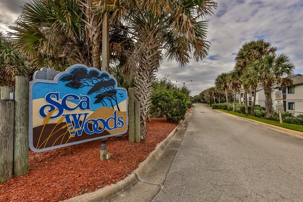 Sea Woods