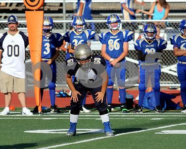 2012 varsity Vikings