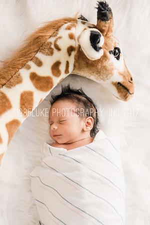 Kai Trevino Newborn