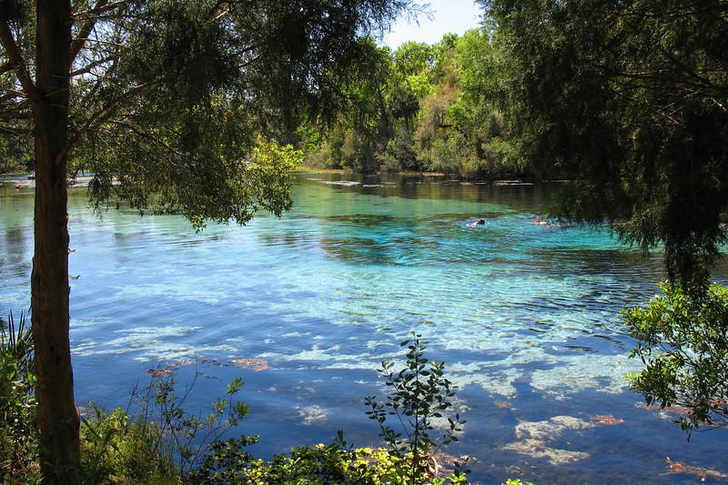 Ocala National Forest - Sinkholes Trail