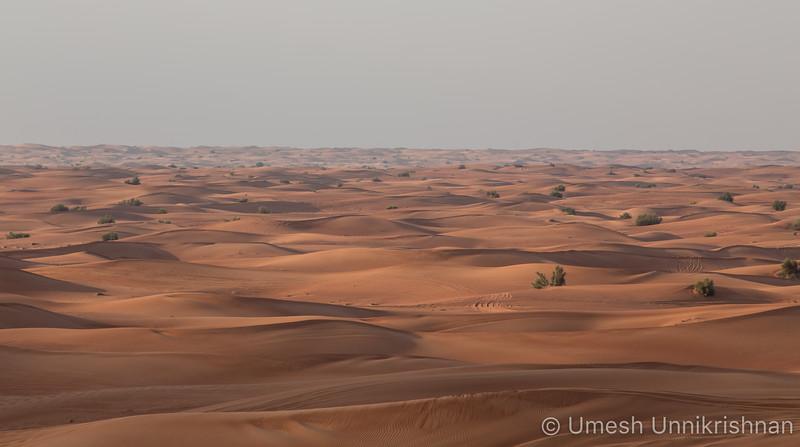 Dubai Desert Safari-9388.jpg
