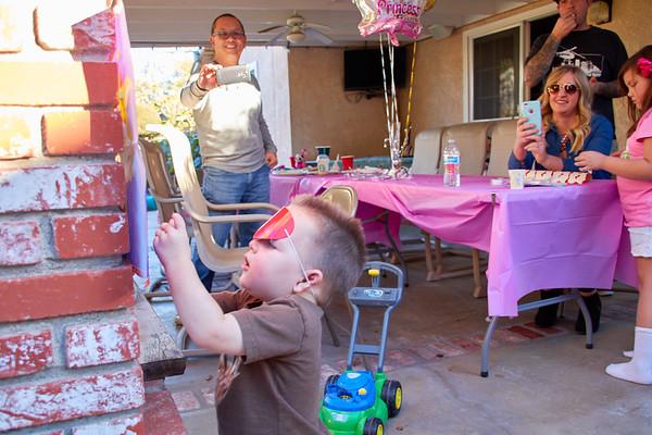 Livie's 4th Birthday Party